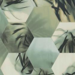 219570 Dimensions Edward Vliet