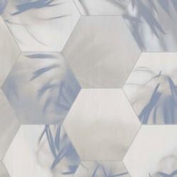 219573 Dimensions Edward Vliet