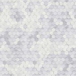 219580 Dimensions Edward Vliet