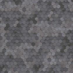219581 Dimensions Edward Vliet
