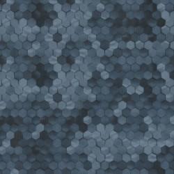 219582 Dimensions Edward Vliet