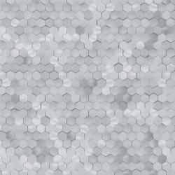 219583 Dimensions Edward Vliet