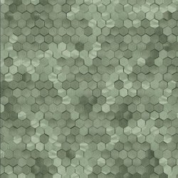 219586 Dimensions Edward Vliet