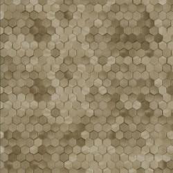 219587 Dimensions Edward Vliet