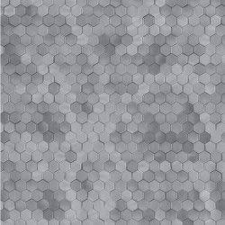 219588 Dimensions Edward Vliet
