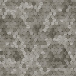 219589 Dimensions Edward Vliet