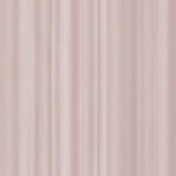 219591 Dimensions Edward Vliet