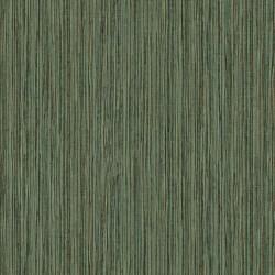 219611 Dimensions Edward Vliet