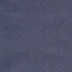 Papel Pintado 219-2163